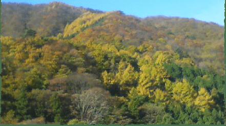 谷川岳と利根川の源流が育む大地の恵み
