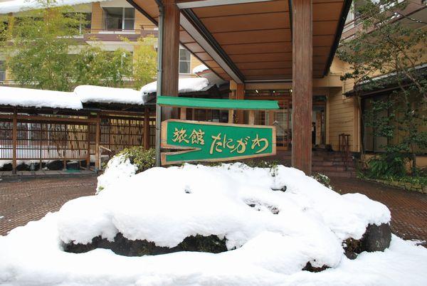 いよいよ谷川温泉にも雪が積もりました。