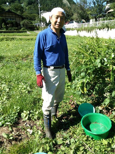 【23日にご宿泊の方必見!】秋ミョウガ収穫体験ツアーのお知らせ