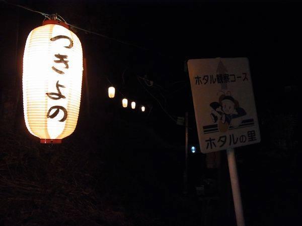 月夜野ホタルのすすめ★☆★観賞ツアー開催★☆★